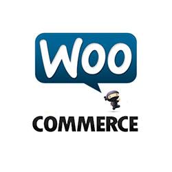 lojas online woocommerce